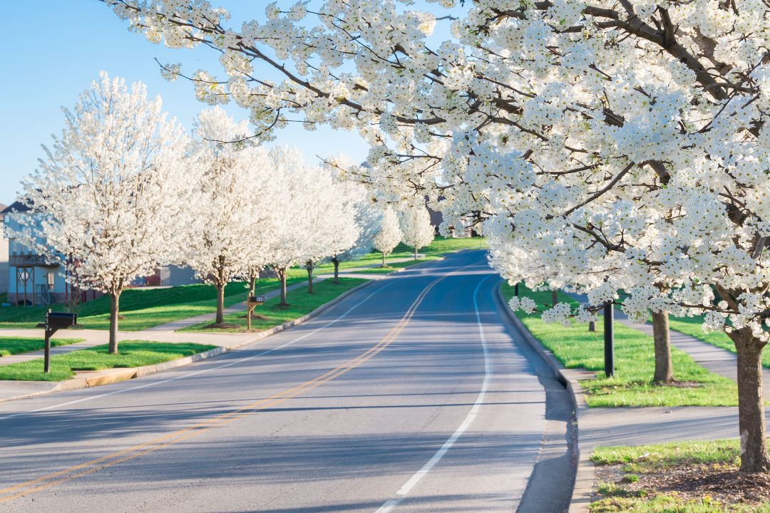 richmond ky counseling and psychiatry kentucky counseling center richmond ky counseling and psychiatry